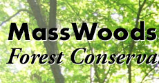 MassWoods