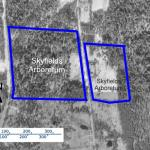 Skyfields Arboretum aerial