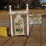 Sign for the Mapleline Farm store on Comins Road.