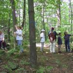Cronquist Botany Hike