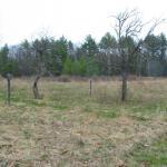 East Parcel field