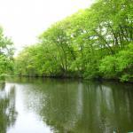 Hadley Pond