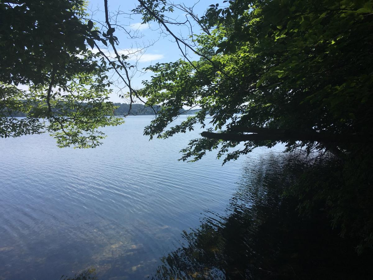 Lake Cochichewick, the water supply for the town of North Andover, is accessible from trails on the Osgood Hill Conservation area.