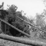 1938 Hurricane and Wilderness House