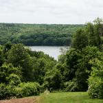 Dense forest gives way to beautiful views