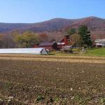 Caretaker Farm