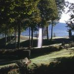 A view of Ashintully Gardens