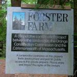 Forster Farm