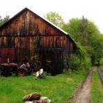 North Amherst Community Farm