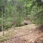 Hepler wood trail