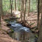 Hepler stream