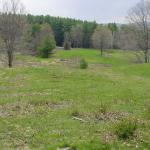 View from the potential homesite, looking Southwest.