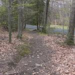 Trail head off Goshen Rd